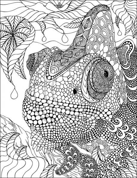 iguane-zentangle