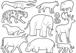 Index Of Images Coloriages Image Animaux